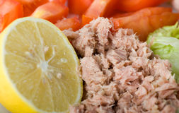 Tuna chunks close up Stock Images