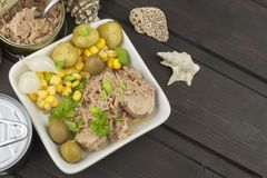 Tuna chunks with vegetables, preparing dietary meals Stock Photos