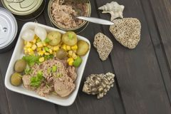 Tuna chunks with vegetables, preparing dietary meals Stock Photo