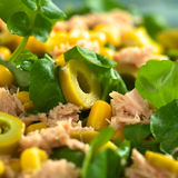 Tuna, Corn, Green Olive and Watercress Salad Stock Photography