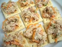 Tuna and Crackers Stock Images