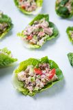Tuna Cucumber Pepper Wraps royalty free stock photo