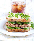Tuna and cucumber sandwich Royalty Free Stock Images