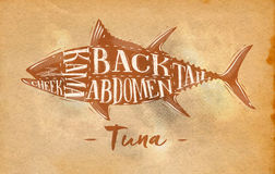 Tuna cutting scheme craft. Poster tuna cutting scheme lettering cheek, kama, abdomen, back, tail in retro style drawing on craft paper paper background Royalty Free Stock Photography