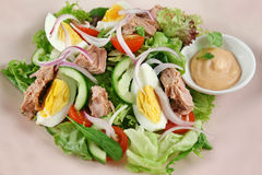 Tuna And Egg Salad 1 Royalty Free Stock Images