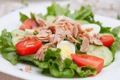 Tuna and egg salad Royalty Free Stock Photography