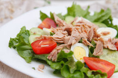 Tuna and egg salad Stock Photo