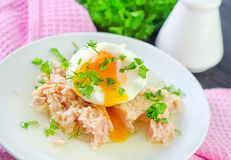 Tuna and egg Royalty Free Stock Photography