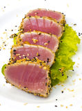 Tuna fillet with sesame isolated Stock Images