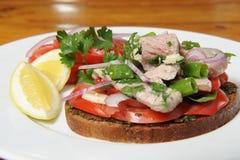 Tuna fish. Dish completed with marinated tuna stock photo