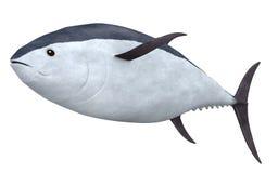 Tuna fish 2. 3d render of tuna fish 2 Royalty Free Stock Image