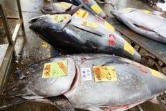 Tuna Fish Image libre de droits