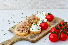 Tuna fish Bruschetta sandwich with cottage cheese. Healthy  Tuna  fish organic  sandwich with bruschetta, fresh onion  and  cherry tomatoes Royalty Free Stock Photos