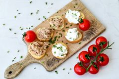 Tuna fish Bruschetta sandwich with cottage cheese. Healthy  Tuna  fish organic  sandwich with bruschetta, fresh onion  and  cherry tomatoes Stock Image