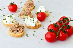 Tuna fish Bruschetta sandwich with cottage cheese. Healthy Tuna fish organic sandwich with bruschetta, fresh onion and cherry tomatoes stock photography