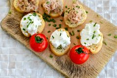 Tuna fish Bruschetta sandwich with cottage cheese. Healthy Tuna fish organic sandwich with bruschetta, fresh onion and cherry tomatoes stock images