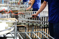 Tuna fish in can processing in manufactory