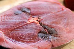 Tuna Fish Close Up Stock Images