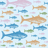 Tuna fish colourful seamless  pattern. Realistic engraved style of fishes on light blue background Stock Photo