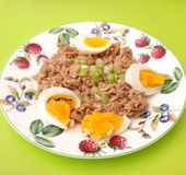 Tuna fish with eggs Stock Images