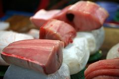 Tuna fish. Fish market in South Korea Royalty Free Stock Images