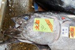 Tuna Fish. Fresh tuna fish at Tsukiji fish market in Tokyo, Japan. With an annually estimated turnover of 5.5 billion dollars and more than 60.000 workers ,this stock photos