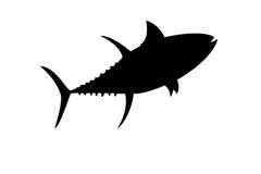 Tuna fish illustration isolate. Silhouette of tuna fish illustration isolate stock illustration