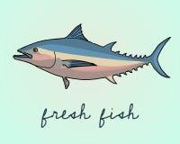 Tuna fish illustration Royalty Free Stock Image