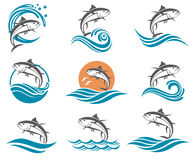 Tuna fish illustrations set. Collection of tuna fish images with waves Royalty Free Stock Photos