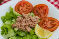 Tuna Fish Meat Over Green Salad Royalty Free Stock Photos