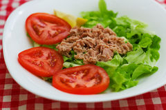 Tuna Fish Meat Over Green-Salat Stockfotos