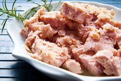 Tuna fish in oil, canned food. stock images