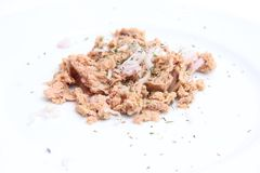Tuna fish with onions Royalty Free Stock Photography
