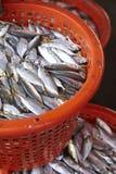 Tuna fish in red basket Stock Photo
