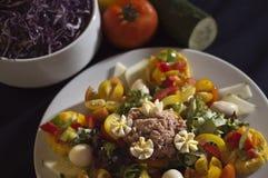 Free Tuna Fish Salad Stock Photography - 27577462