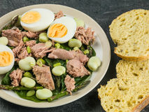 Tuna Fish Salad with Broad Beans Boiled Eggs and Asparagus Stock Photos