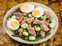 Tuna Fish Salad with Broad Beans Boiled Eggs and Asparagus Royalty Free Stock Images