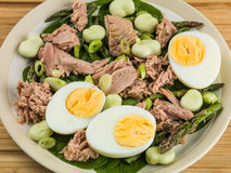 Tuna Fish Salad with Broad Beans Boiled Eggs and Asparagus Stock Images