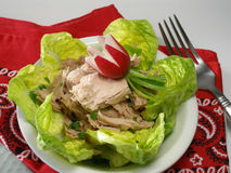 Tuna fish salad with radish. Tined tuna fish salad with lettuce and radish ready to eat stock photo