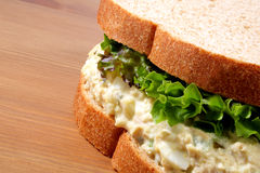 Tuna fish salad sandwich. On wheat bread with lettuce Royalty Free Stock Image