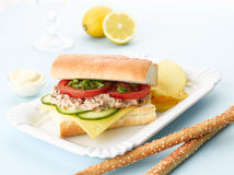 Tuna Fish Salad Sandwich Royalty Free Stock Images