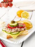 Tuna Fish Salad Sandwich Royalty Free Stock Photos