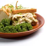 Tuna Fish Sandwich. On white bread, greens or lettuce, on brown plate Stock Images