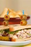Tuna fish sandwich. On toast with potato chips Royalty Free Stock Photos
