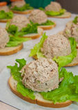 Tuna fish sandwiches Stock Image
