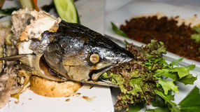 Tuna fish skeletton food on plate Stock Photo