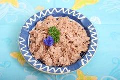 Tuna fish Royalty Free Stock Images