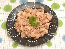Tuna fish. Some tuna fish with oil Stock Photo