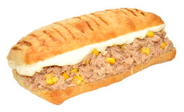 Tuna Fish And Sweet Corn Sandwich. Tuna fish and sweet corn Panini sandwich isolated on a white background Stock Images