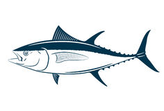 Tuna fish symbol on white background,Vector. Royalty Free Stock Photos